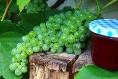 Raisins et gelée de raisin photographie stock
