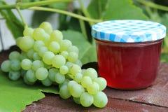 Raisins et gelée de raisin images libres de droits