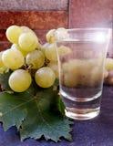 Raisins et verre de vin sec Photographie stock libre de droits