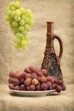 Raisins et vin dans la bouteille photographie stock libre de droits