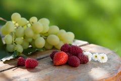Raisins, fraises et framboises Photos stock
