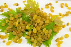 Raisins on the grape leaf Royalty Free Stock Photography