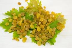 Raisins on the grape leaf Stock Photo