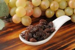 Raisins and grapes Stock Photos
