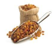 Raisins isolados no branco foto de stock