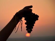 Raisins israéliens noirs Photos stock