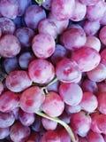 Raisins noirs photo libre de droits