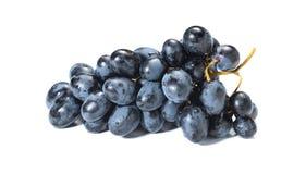 Raisins noirs avec la goutte de l'eau d'isolement sur le fond blanc images stock