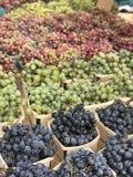 Raisins organiques photo libre de droits