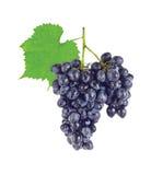 Raisins organiques juteux frais de groupe avec le vert Photographie stock libre de droits