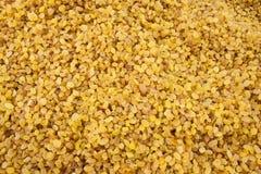 Raisins pequenos amarelos fotografia de stock royalty free