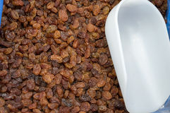 Raisins Royalty Free Stock Image