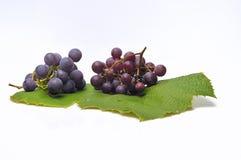 Raisins pourprés d'isolement. Photo stock