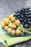Raisins, prunes d'un plat Photographie stock libre de droits