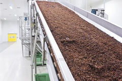 Raisins in raisin production factory packaging Royalty Free Stock Photos