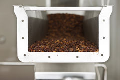Raisins in raisin production factory packaging. Food industry Royalty Free Stock Photo