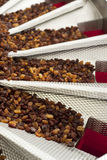 Raisins in raisin production factory packaging. Food industry Royalty Free Stock Images