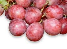 Raisins rouges Photos stock