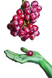 Raisins rouges Images stock