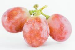 Raisins rouges photo libre de droits