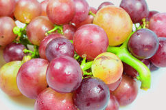 Raisins rouges d'isolement sur le fond blanc Image libre de droits