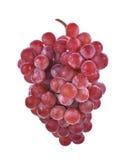 Raisins rouges d'isolement sur le fond blanc Photographie stock libre de droits