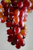 Raisins rouges d'isolement sur le fond gris Photo libre de droits