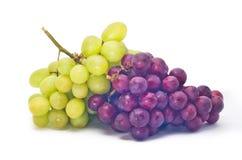 Raisins rouges et verts Photographie stock libre de droits