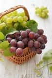 Raisins rouges et verts Photo libre de droits