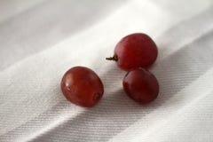 Raisins rouges juteux photos stock