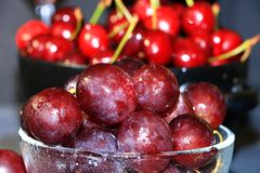 Raisins rouges juteux avec des baisses sur un plan rapproché noir de fond, foyer sélectif images libres de droits