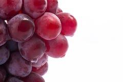 Raisins rouges sur l'acrylique blanc Photographie stock libre de droits