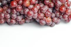 Raisins rouges sur le fond blanc Images libres de droits