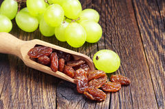 Raisins in scoop Stock Image