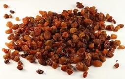 Raisins secados Imagem de Stock Royalty Free