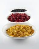 Raisins secs, canneberges sèches et myrtilles sèches Image libre de droits