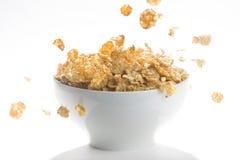 raisins secs de céréale de cuvette Photo stock