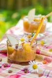 Raisins secs de nectarines de poires de smoothie de jardin de boissons d'été Photographie stock