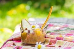 Raisins secs de nectarines de poires de smoothie de jardin de boissons d'été Images stock