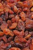 Raisins secs en tant que texture de raisin sec de raisin de fond Photographie stock libre de droits