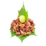 Raisins secs et raisins photos libres de droits