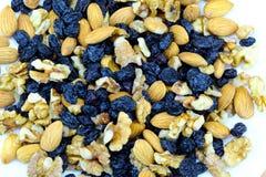 Raisins secs foncés avec le plan rapproché cru d'écrous images libres de droits
