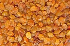 Raisins secs juteux Photographie stock
