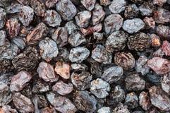 Raisins secs séchés au soleil Images libres de droits