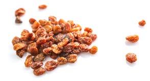 Raisins secs secs II Image stock
