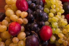 Raisins ukrainiens et prunes Images libres de droits
