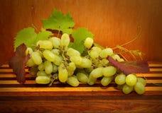 Raisins verts Image stock
