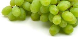 Raisins verts de vigne Photo libre de droits