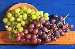 Raisins verts et rouges photos stock