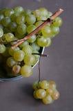Raisins verts frais Photos libres de droits